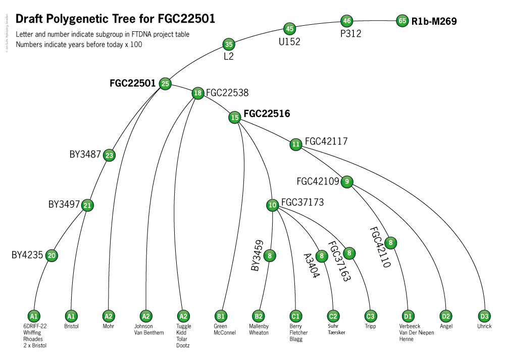 Phylogenetic Tree FGC22501